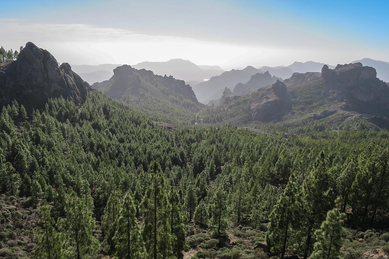 Gran Canaria luoghi da Visitare